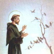 saintfrancis