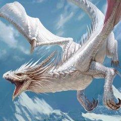 DragonNil