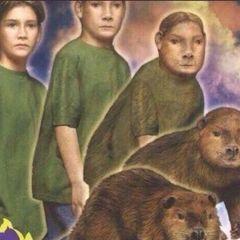 beaverotter